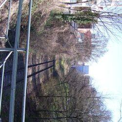 Gehölzschnitt auf der alten Kohlebahntrasse in Linden