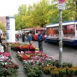 Wochenmarkt auf dem Pfarrlandplatz