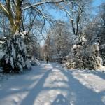 Bergfriedhof im Winter