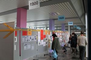Ausstellung zur Geschichte der Albert-Schweitzer-Schule