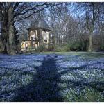 Schatten auf blau (Foto: Wolfgang Hagemann)