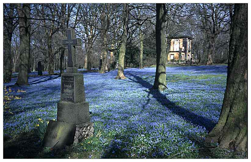 Bergfriedhof (Foto: Wolfgang Hagemann)