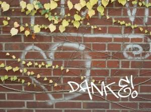 Grafitti Danke