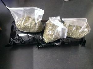Beschlagnahmte Marihuanadolden