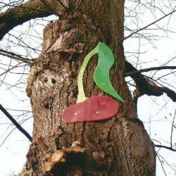 Im Heidkamp - Kirsche am Baum 2006