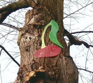 Im Heidkampe - Kirsche am Baum 2006