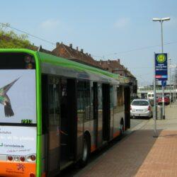 Linien 100 und 200: Verlegung der Bushaltelle Bahnhof Linden/Fischerhof