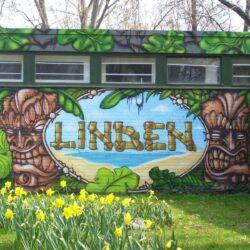 Symbol Linden