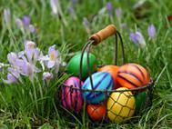 Eieiei - Experimente und Aktionen mit Eiern