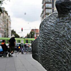Schwarzer Bär (Foto: © Thomas Finster)