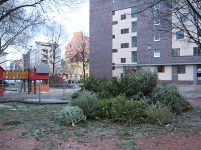 Weihnachtsbaum Sammelplatz