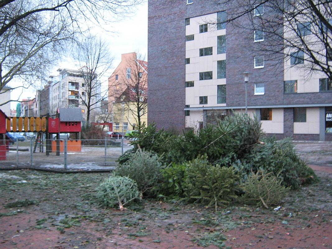 Weihnachtsbaum Sammelplatz Stephanusstraße