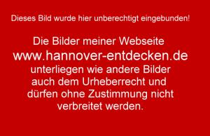 Urheberrecht gilt auch im Netz