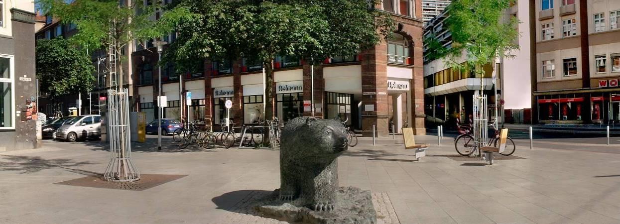 Schwarzer Bär 2005