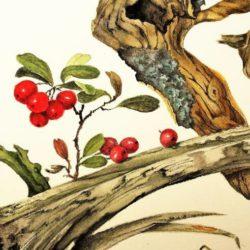 Altes Holz von Edith Meyfarth