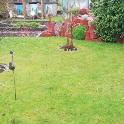 Für Kleingärtner: Kostenlose Untersuchung des Gartenboden