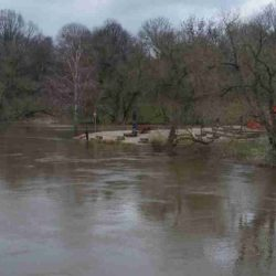 Impressionen vom Leine / Ihme Hochwasser Februar 2020