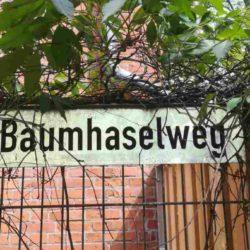 Baumhaselweg